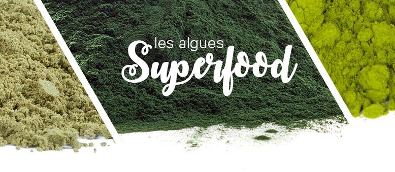 Les algues : Chlorelle et Spiruline !
