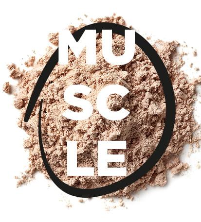 De quoi le corps à besoin après un effort musculaire