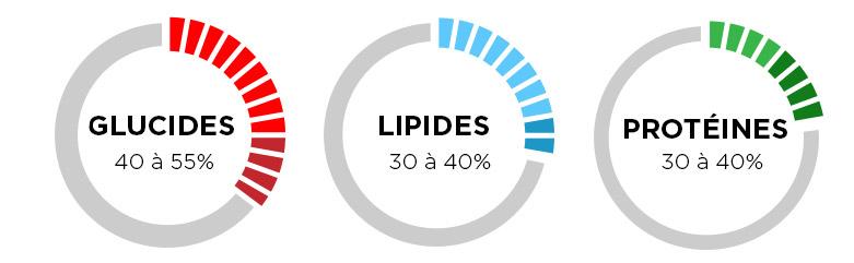 Répartition de l'alimentation entre les Glucides, Lipides et Protéines