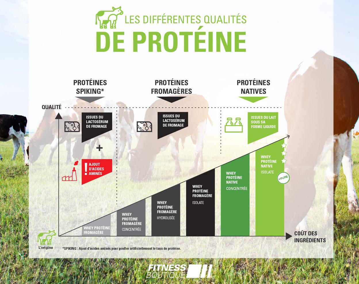 Différentes qualité de Protéine - FitnessBoutique