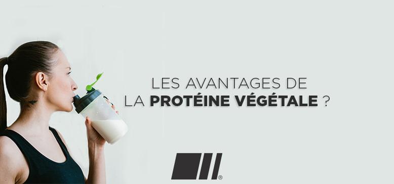 Quels sont les avantages de la Protéine Végétale ?