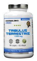 pre workout BodyBuilding Nation Tribulus
