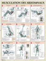 Librairie - Musique VIGOT Poster Musculation abdominaux
