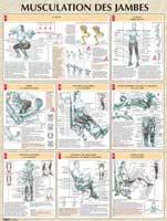 Librairie - Musique Vigot Poster Musculation des Jambes
