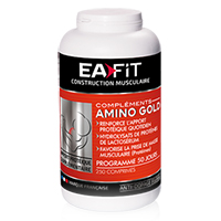 Acides aminés EAfit Amino Gold