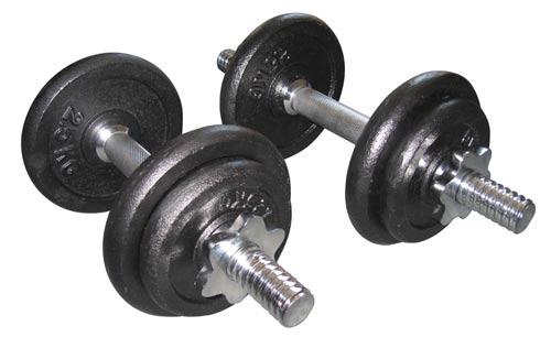ronds fitness doctor valise de fonte 20 kg noir 28mm. Black Bedroom Furniture Sets. Home Design Ideas