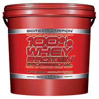 Whey protéine Scitec nutrition 100% Whey Protein Professional
