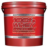 Whey protéine 100% Whey Protein Professional
