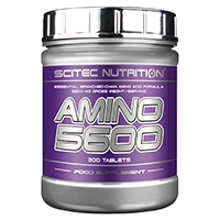 Acides aminés Scitec nutrition Amino 5600