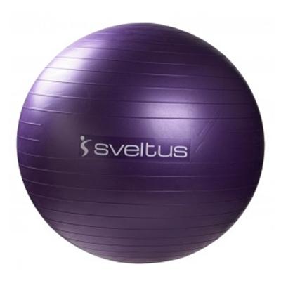 Sveltus Gymball