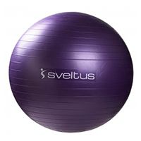 Médecine Ball et Balle lestée SVELTUS Gym Ball