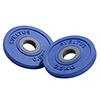 Standard - Diamètre 28mm Paire de disques 0,5kg couleur bleu