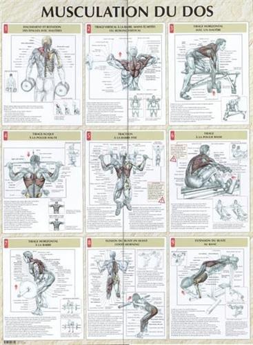 Vigot Poster Musculation du Dos