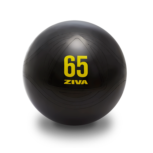 Médecine Ball et Balle lestée Ziva Core Fit Ball